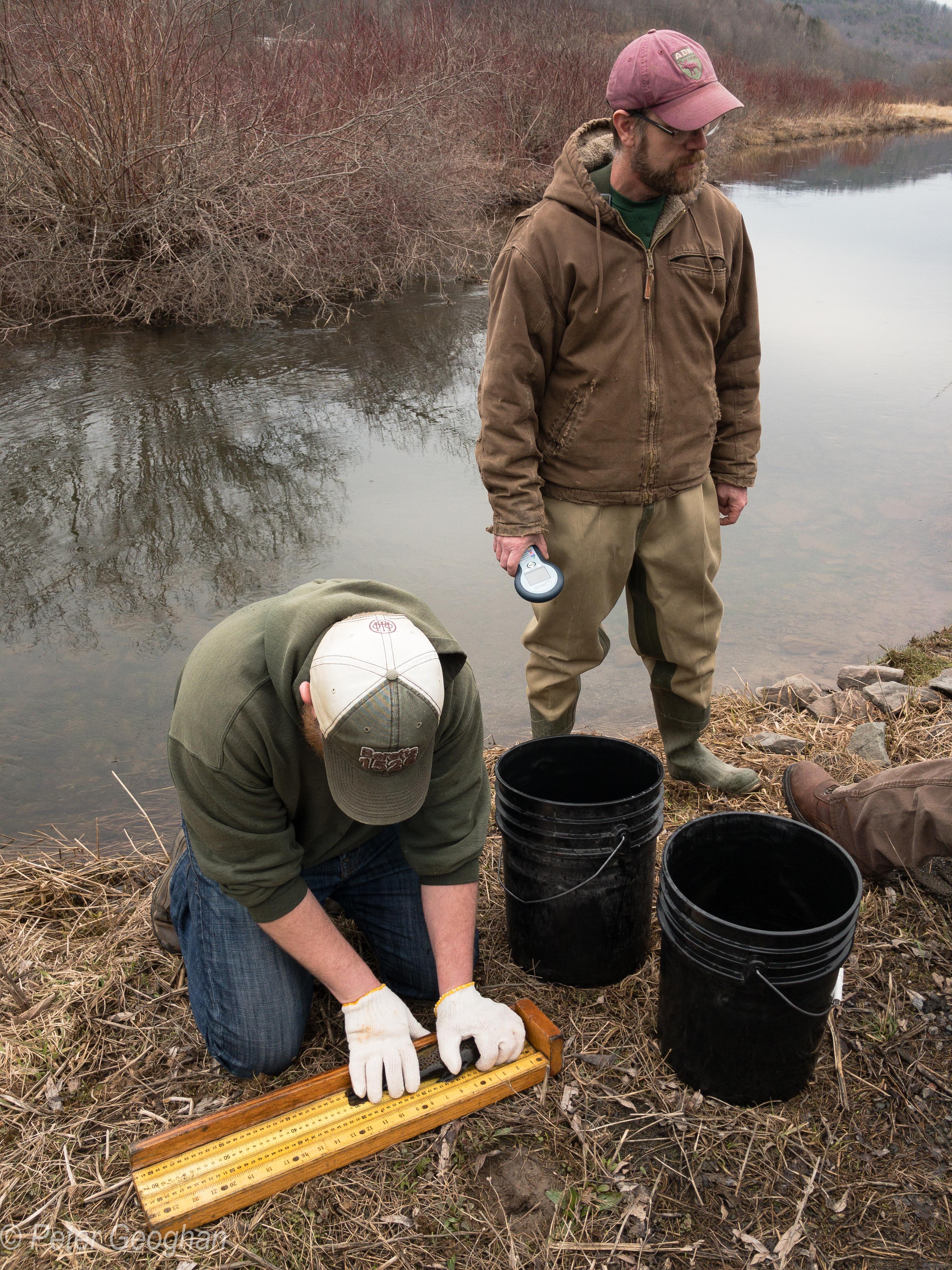 Smaller Catskill Fish Stocking -6.jpg